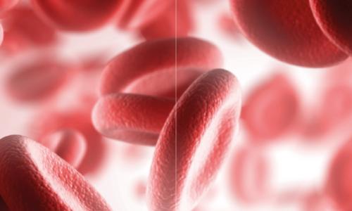 Hemofilia: diagnóstico, tratamento e sintomas
