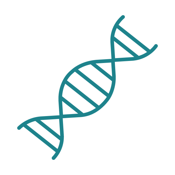 Genética e Medicina personalizada