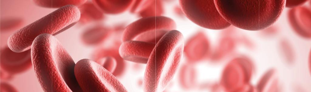 Hemofilia: diagnóstico, tratamento e sintomas | Diagnósticos do Brasil