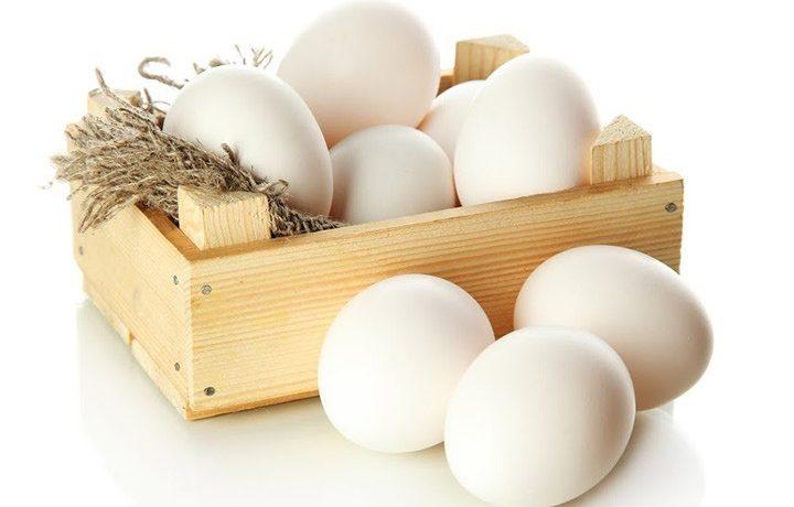 vacina da gripe liberada para alergicos a ovo